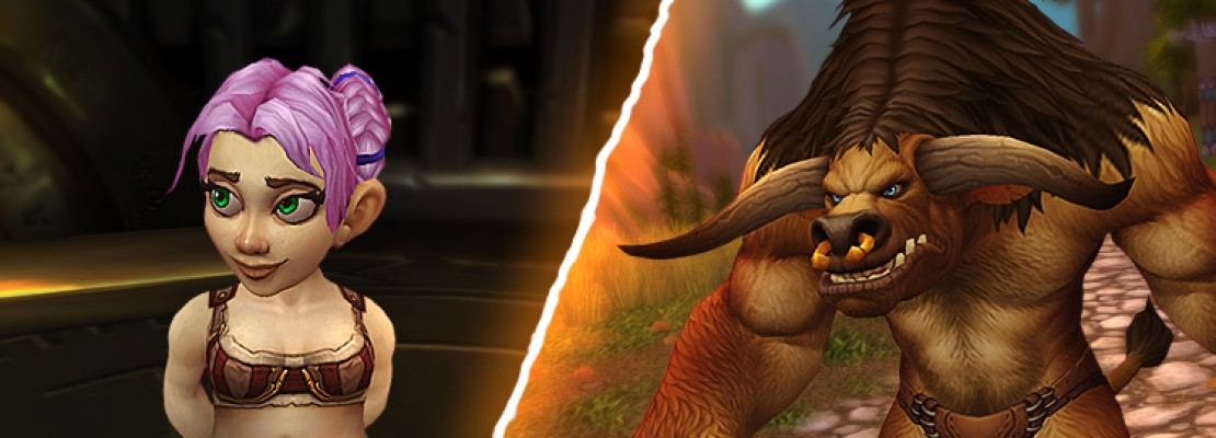 Männliche Tauren und weibliche Gnome im Charakter Viewer