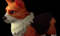 WoW: Ein Corgi als Haustier für den 12. Geburtstag