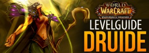Levelguide_Druide