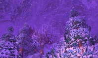 WoW: Die Schneeeule ist wieder da