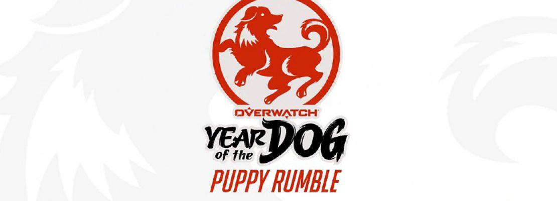 Jahr des Hundes: Overwatch Puppy Rumble