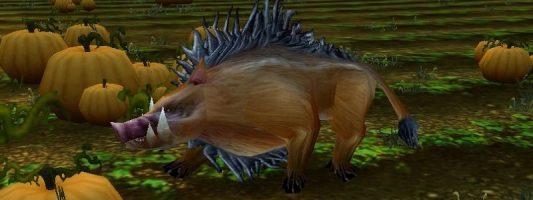 WoW: Ein Spieler erreichte Stufe 60 durch das Töten von Ebern