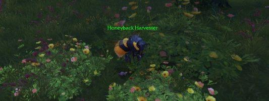 Patch 8.2.5: Die neue Fraktion für das Bienen-Reittier