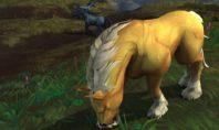 Shadowlands: Ein besonderes zähmbares Pferd für Allianz-Jäger